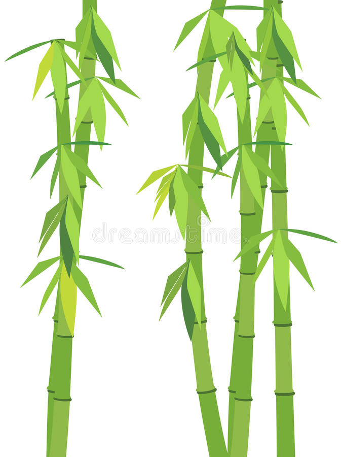 Download Green Bamboo Royalty Free Stock Photo - Image: 18672755