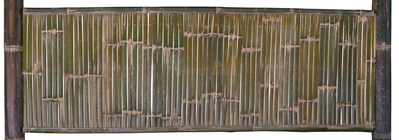 Green bamboo fence isolated on white background. clipping path.  stock image