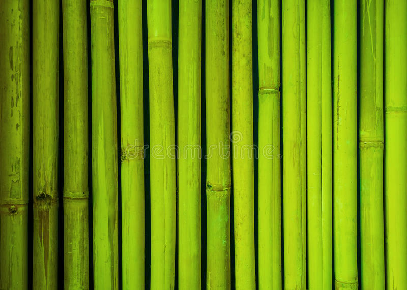 Green bamboo fence texture, bamboo background, texture background, bamboo texture stock photo
