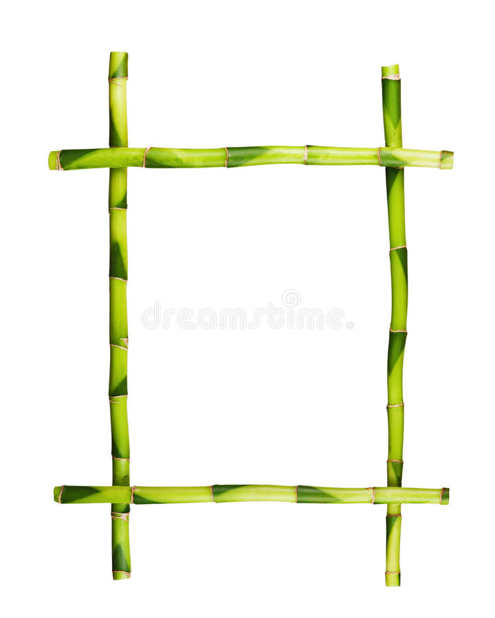 Green bamboo frame isolated on white background. royalty free stock image