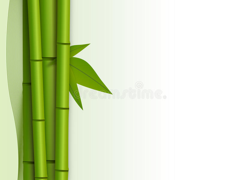 Download Green bamboo shoots stock vector. Image of nature, view - 22048734