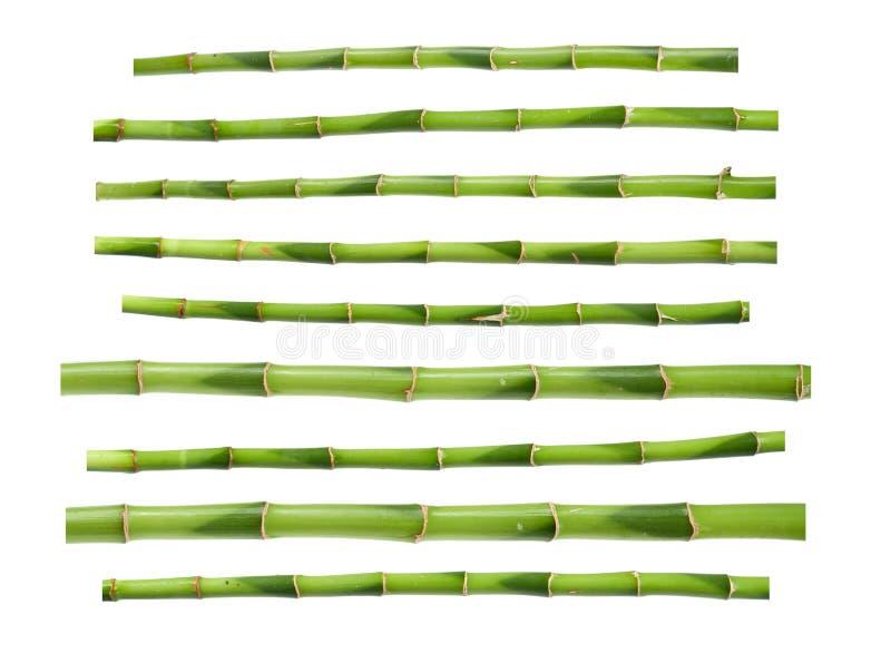 Green bamboo sticks stock illustration of