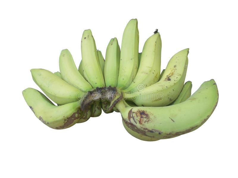 Green Banana fruit one bunch. Siolated on white stock images