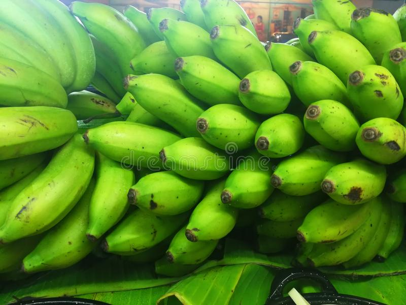Green bananas. Fruit ready to consume. Great in soup , fried, sliced im cubes or smashed with tuna stock photography