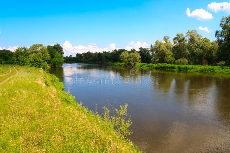 Green bank of Bug river royalty free stock photography
