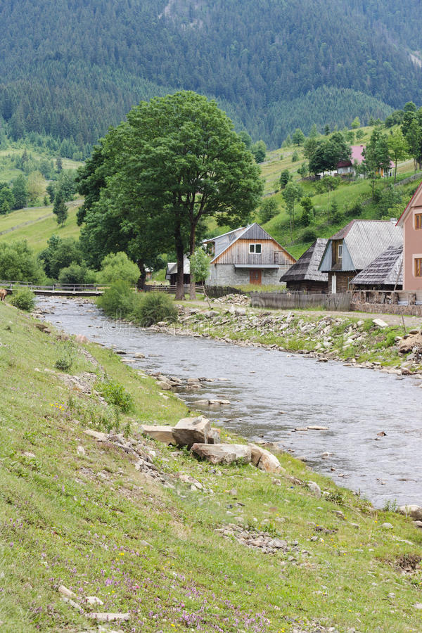 Green banks of river in mountain villlage. During summer royalty free stock photos