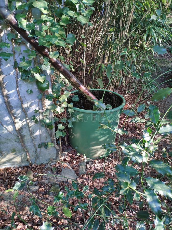 A green barrel with a pipe to collect rain water. Rainwater, garden, collecting, plastic, environment, conservation, ecology, gardening, outdoor, drain, gutter royalty free stock photography