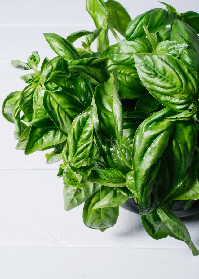 Green basil leaves on background of white brick wall, fresh healthy herbal food on kitchen table, space mock up, dieting leaf. Vegan pesto on wooden on space stock image