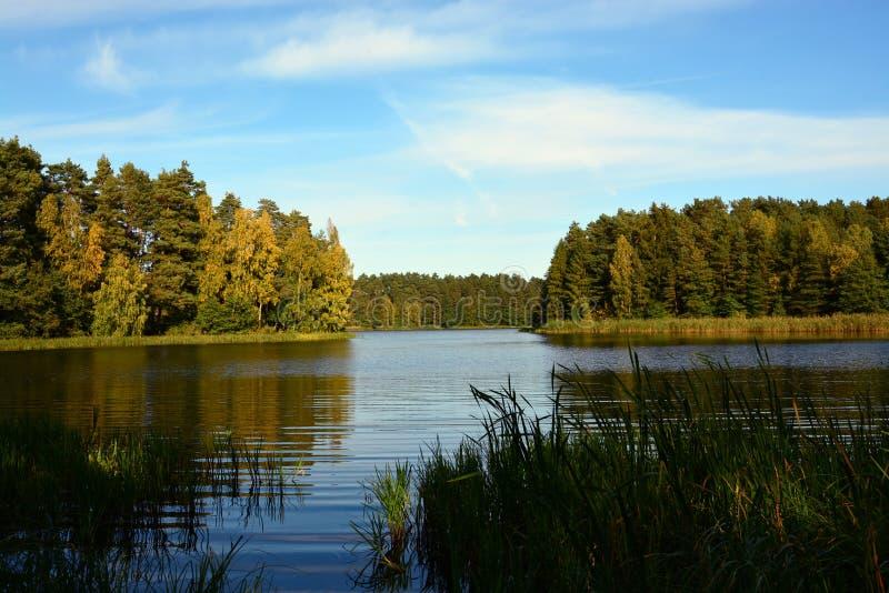 Green Bay στη λίμνη στο δάσος στοκ φωτογραφία