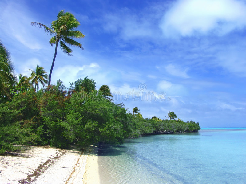 Green Beach royalty free stock images