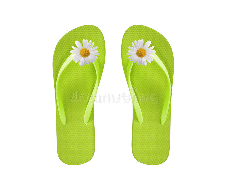 Green beach shoes with chamomile flower isolated on white royalty free stock images