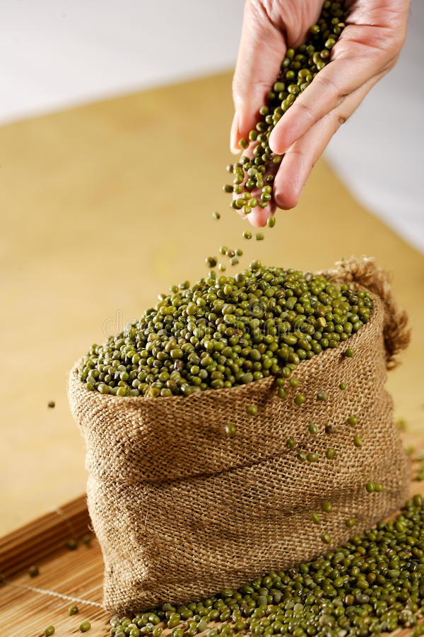 Green Bean royalty free stock image