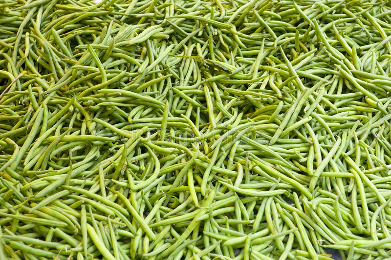 Download Green beans stock photo. Image of green, beans, bean, food - 1422704