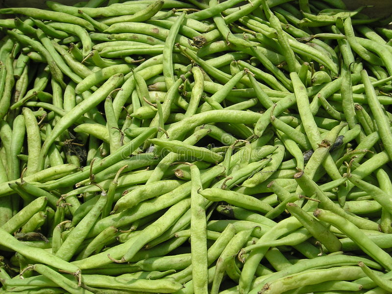 Download Green Beans Stock Photo - Image: 183640