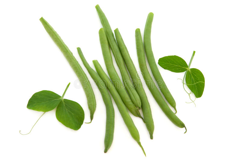 Download Green Beans stock image. Image of foodstuff, nature, french - 23433997