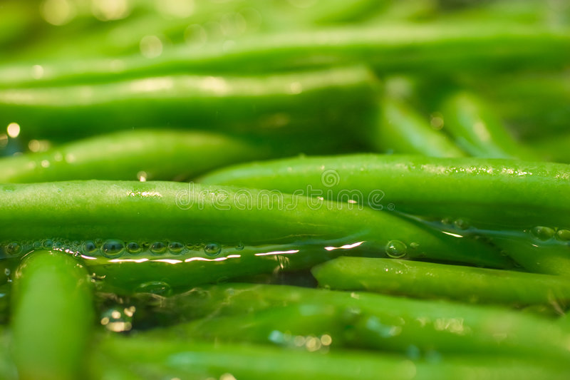 Green beans in boiling water. Low angle close up of simmering green beans royalty free stock images