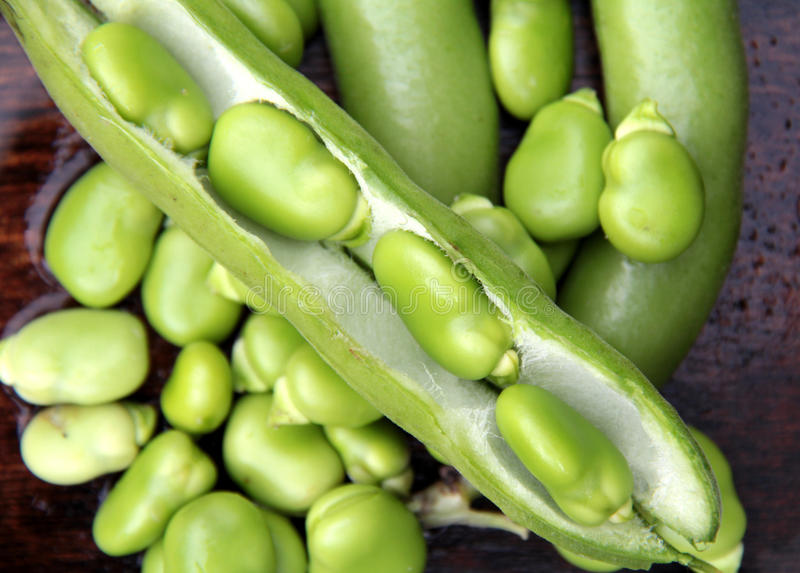 Green beans. Green field beans on wood background stock image