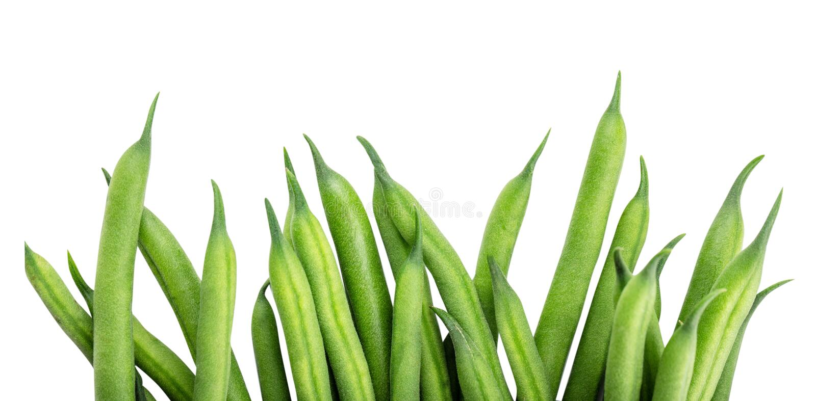 Green beans isolated on a white background. Clipping path. Green beans isolated on a white background stock image