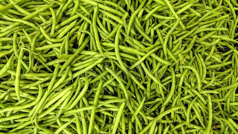 Green beans in loose. Can be used as background or wallpaper and for other possibility or to modify to your taste stock illustration