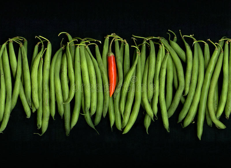 Green Beans Red Chili Pepper. A row of green string beans with one red hot thai chili pepper for contrast on black background royalty free stock image