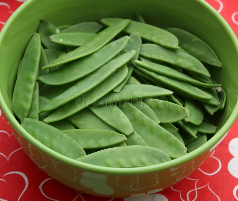 Green Beans. Some raw green beans in a bowl royalty free stock photography