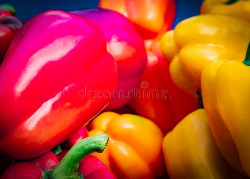Green bell pepper plant 2020 stock photos