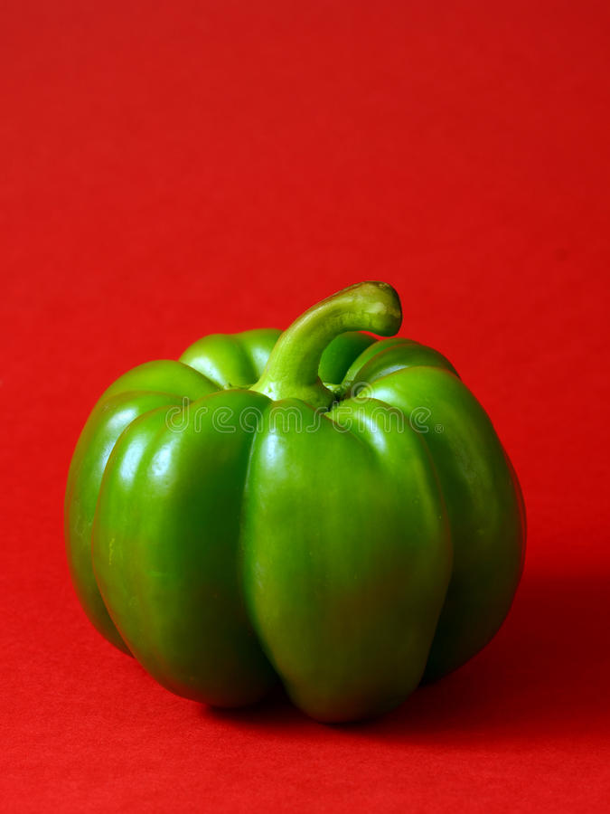 Green bell pepper. On a red background stock image