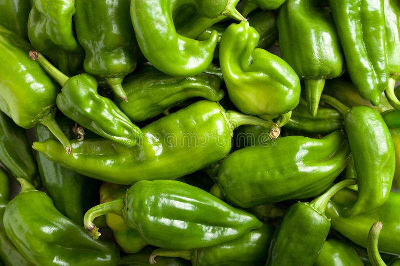 Download Green Bell Peppers stock image. Image of view, frame - 21533637