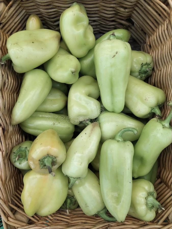 Green bell peppers, natural background. Several sweet green peppers,just picked and cleaned, on display at local shopper`s market stock photos