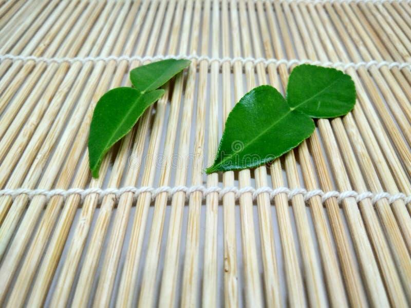 Green bergamot on the plank stock photography