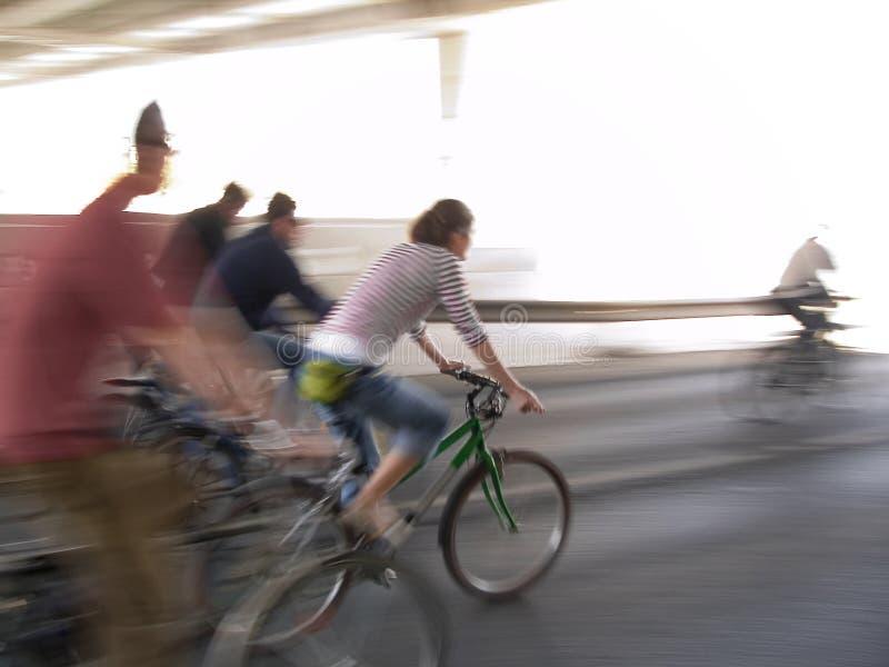 Download Green bike stock image. Image of freedom, lane, speed - 2313539
