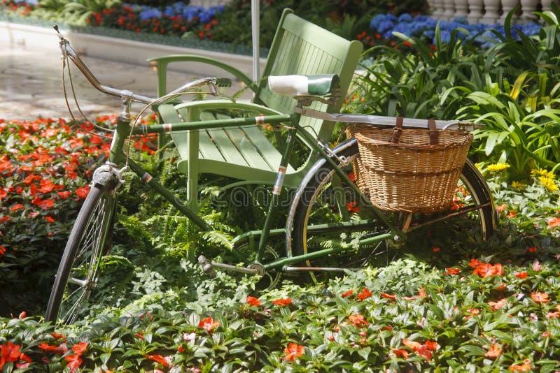 Green Bike in Garden royalty free stock photo