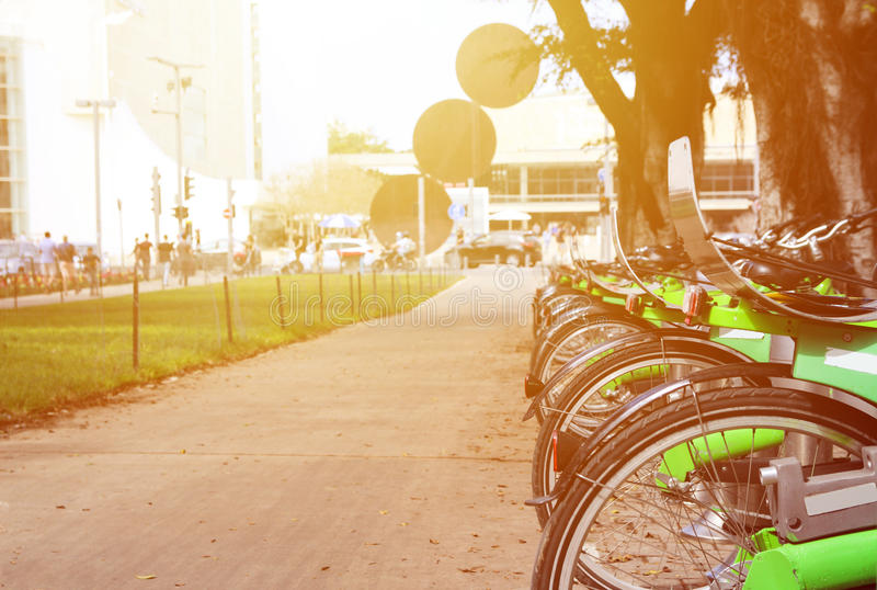 Green bikes for rent on a central street on a sunny day royalty free stock image