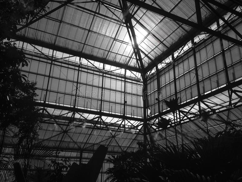 Green house black and royalty free stock image