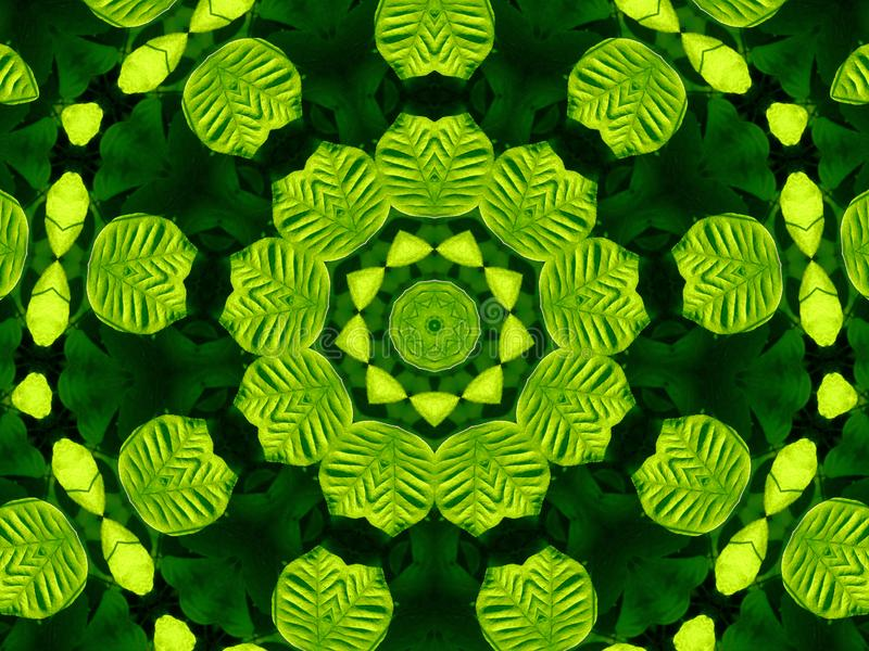Green and Black Leaf Kaleidoscope royalty free stock image