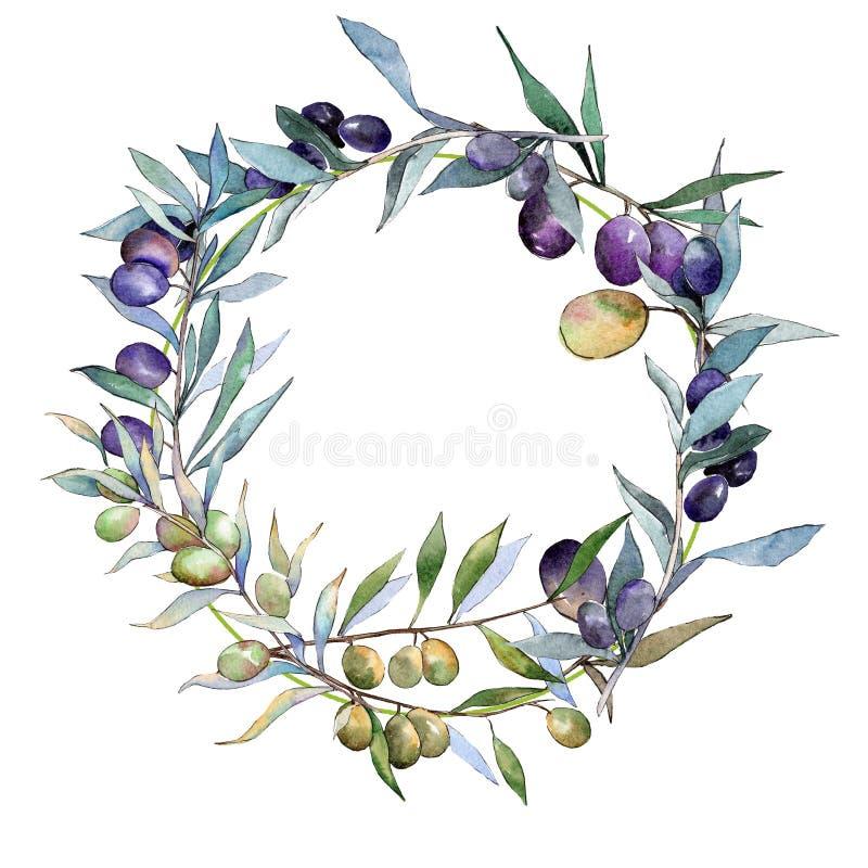Green and black olives. Watercolor background illustration set. Frame border ornament square. stock illustration