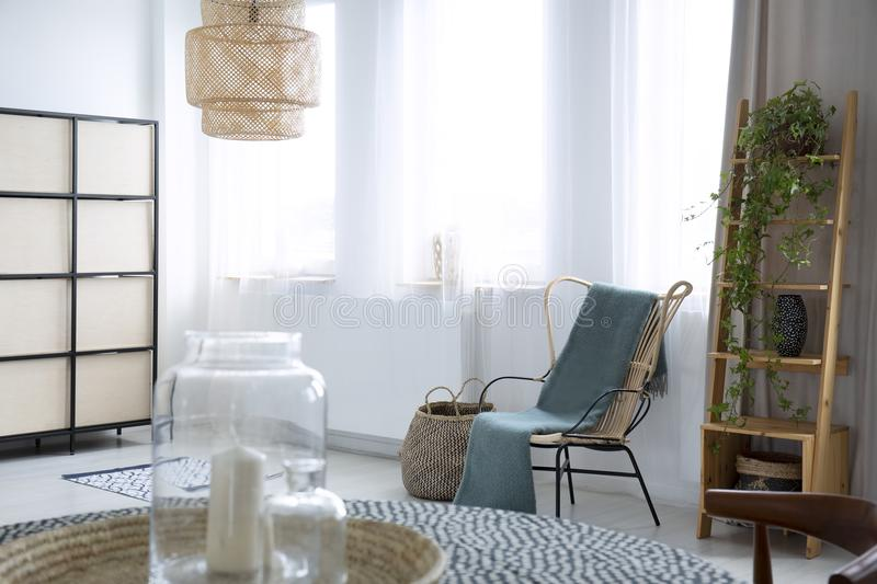 Green blanket on armchair in bright living room interior with pl. Ant, lamp and windows. Real photo concept stock images