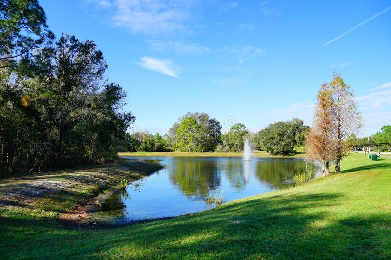 Green lake. A green blue lake, taken in Tampa, florida royalty free stock image