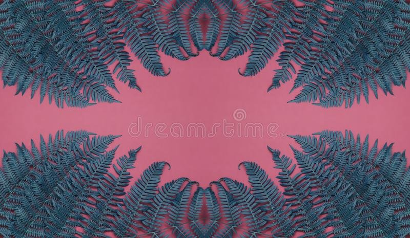 Green and blue leaves on pink background. Long banner photo. Header format. Your text space royalty free stock photography