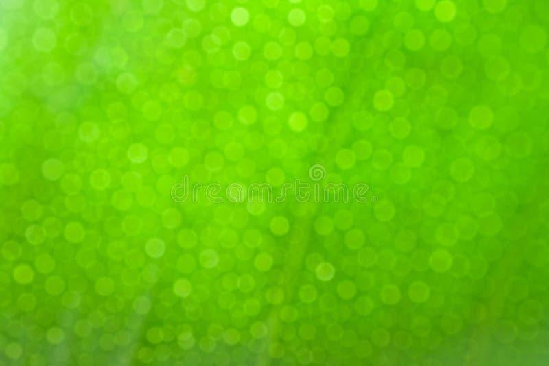 Green bokeh background. royalty free stock photo