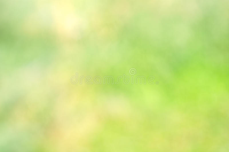 Green bokeh background stock images