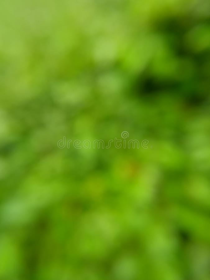 Simple Photo, Green bokeh background for your template element design. Green bokeh background for your template element design royalty free stock photos