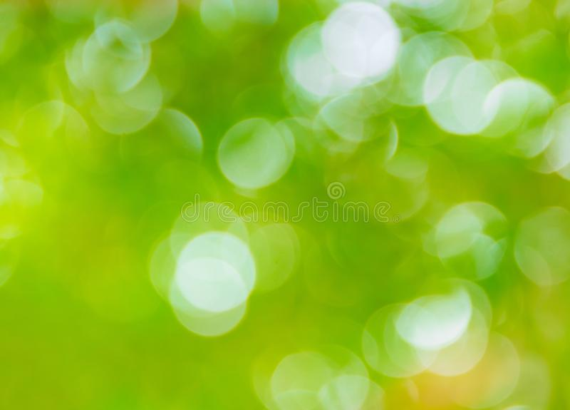 Green bokeh natural color abstract blurred background Warm leaf of tree and bright summer sunlight.  royalty free stock photography