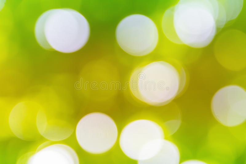 Green bokeh natural color abstract blurred background Warm leaf of tree and bright summer sunlight.  stock photos