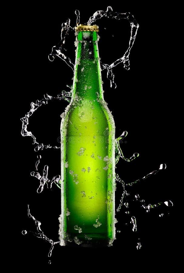 Green Bottle of beer stock image