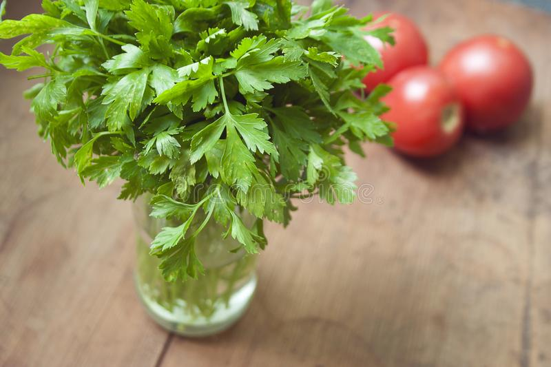 Green bouquet of juicy parsley royalty free stock image