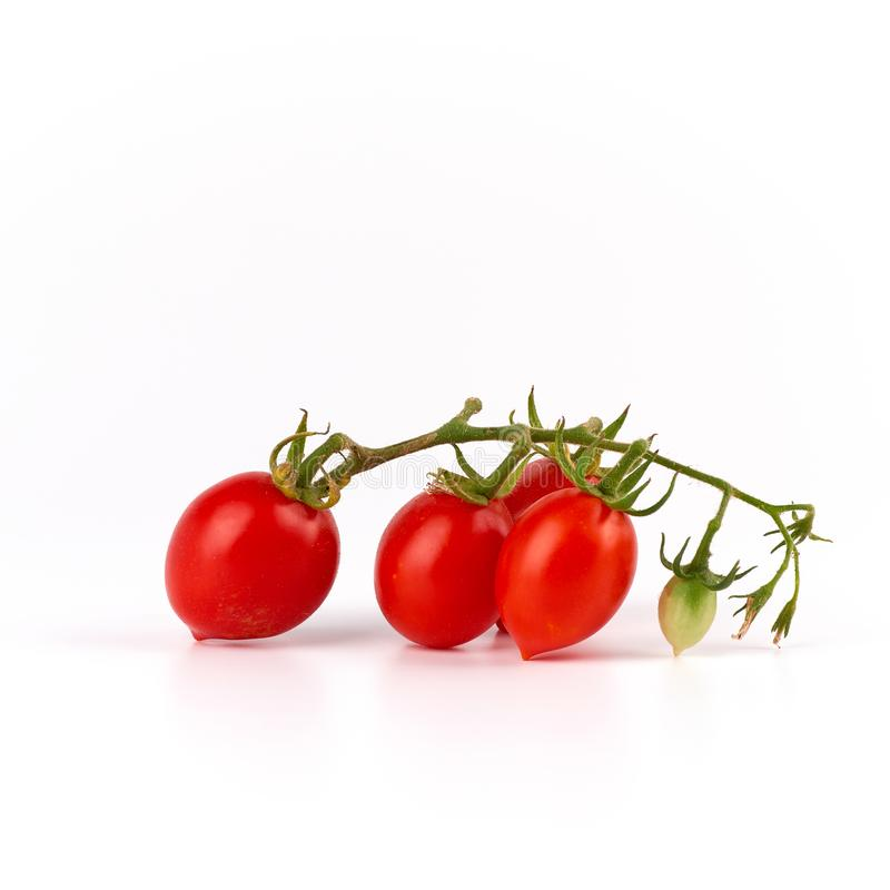green branch with red ripe cherry tomato on a white background royalty free stock photography