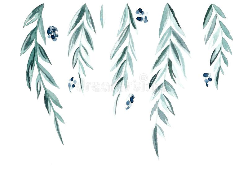 Green branches and leaves vector illustration
