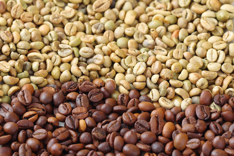Download Green And Brown Coffee Beans Stock Photo - Image: 33756744