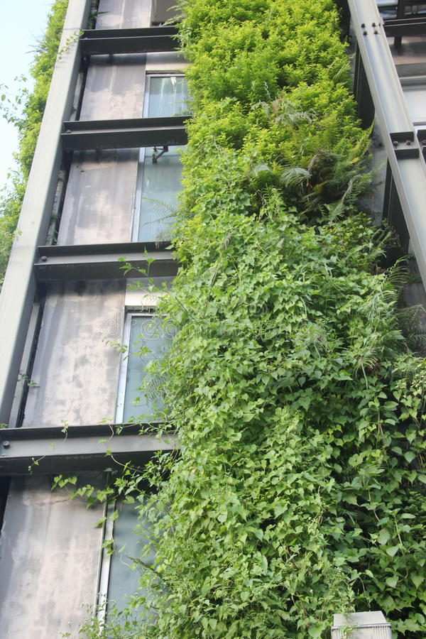 Green building design in SHENZHEN. In the modern architectural design, more and more green idea be added in SHENZHEN royalty free stock photography